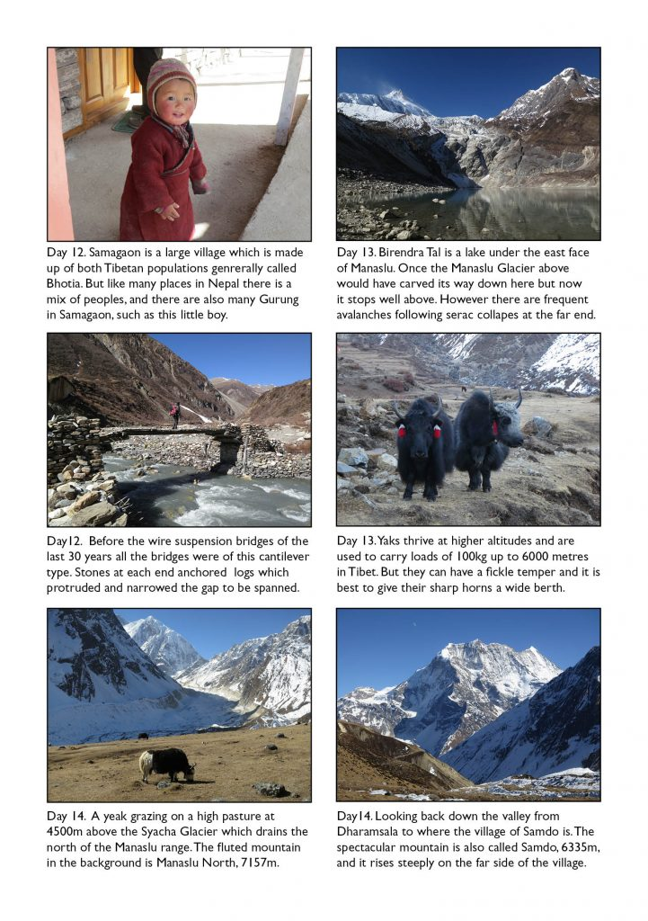 On The Far Side Of The Mountain Pdf
